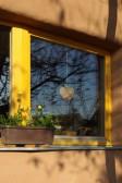 Dřevěné okno SC92