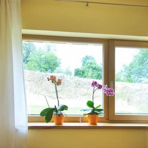 Okno v pokoji pro hosty