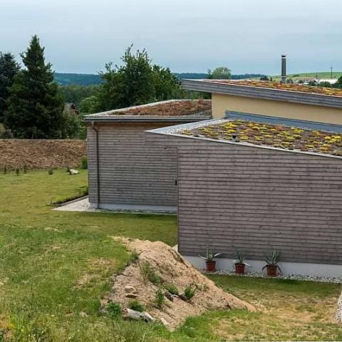 Dřevostavba se zelenou střechou